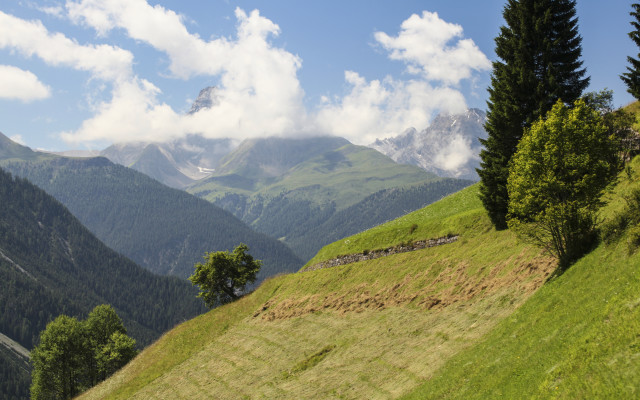 Image of Visit the mountains this summer